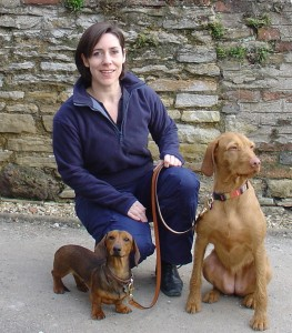 Training your dog with expert Karen Wild