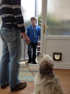 Teach a solid sit stay and keep the dog on a lead when visitors arrive just in case