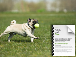 Fetch Give Chapter