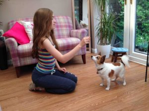 lo res Bow Down 1 Attract dogs attention using treat as lure in hand