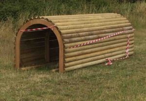nene park agility tunnel low res